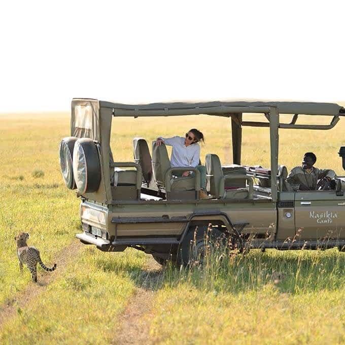 Spot cheetah in the Serengeti in Tanzania during your stay Ehlane Plains Camp