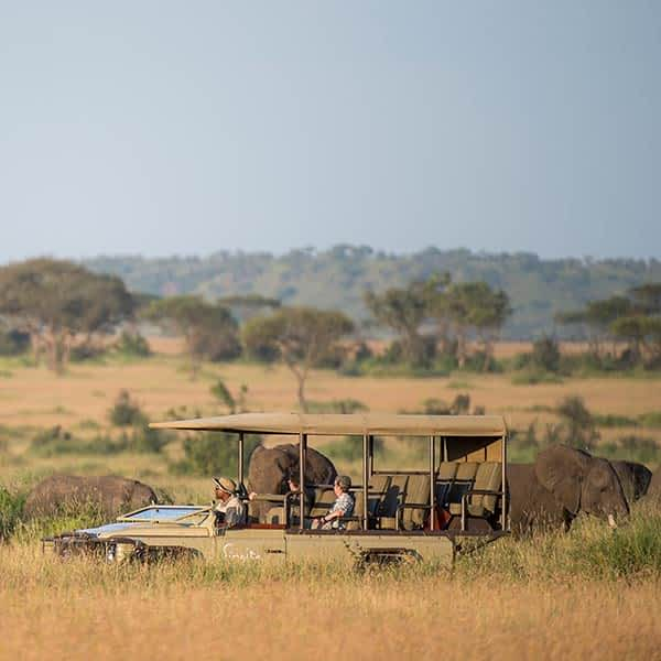 Game drive in Serengeti Grumeti Game Reserve