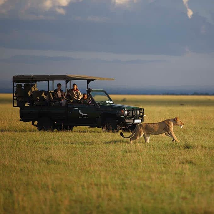 Exceptional game drives at andBeyond Grumeti Serengeti Tented Camp in Tanzania