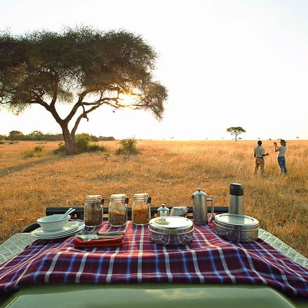 Enjoy a luxury Tanzania safari in the Western Corridor