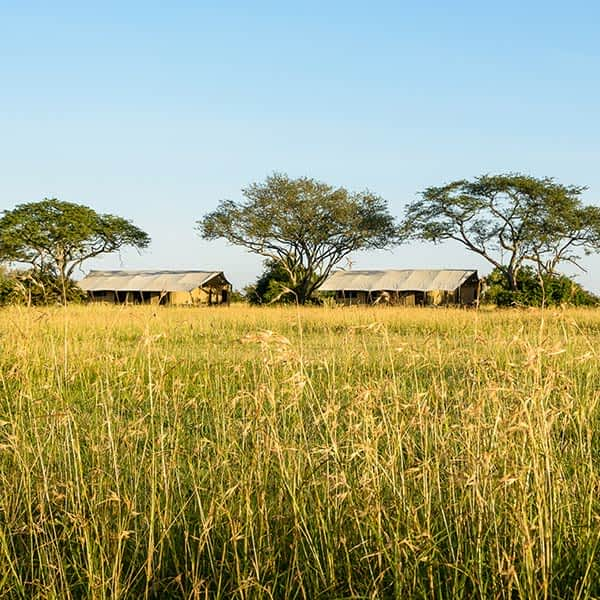 Serengeti Grumeti Game Reserve acccommodation