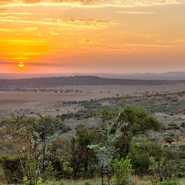 Landscape of the Western Corridor in Serengeti National Park