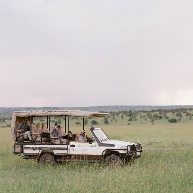 Amazing Serengeti safari experiences at Roving Bushtops