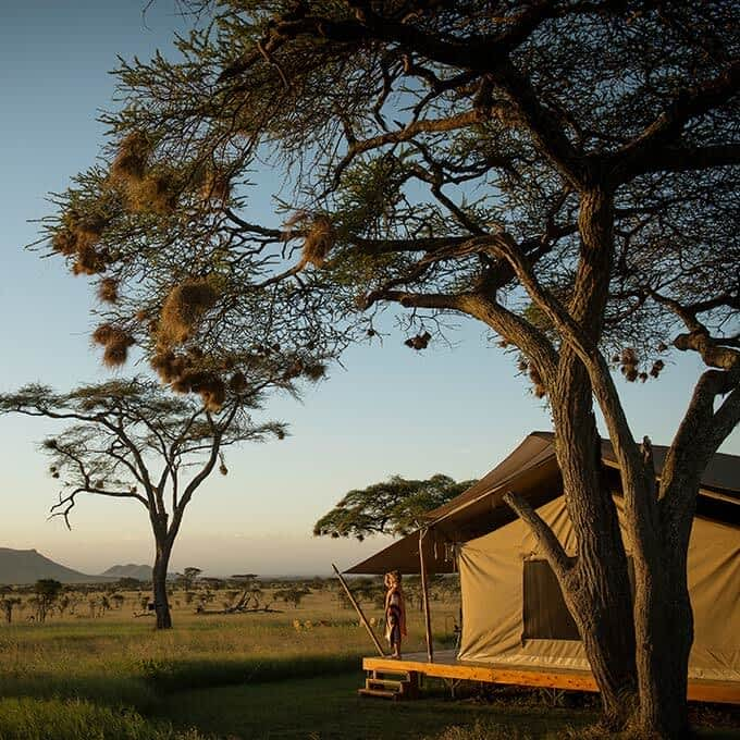Siringit Serengeti Camp offers you the ultimate safari experience in Tanzania