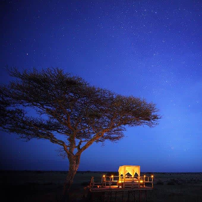 Sleep in a treehouse in Serengeti National Park in Tanzania during your stay at Ehlane Plains Camp