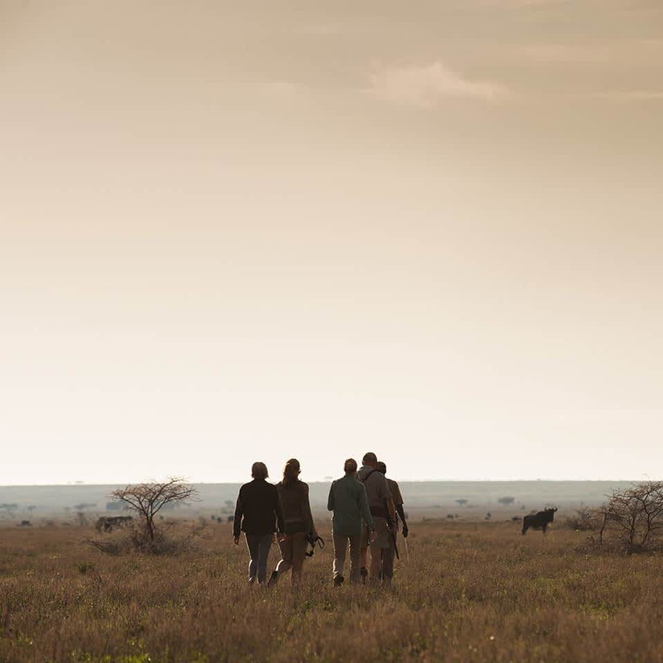 Walking safari in Serengeti - southeastern plains and Ndutu